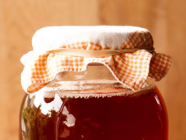 Чайный гриб рецепт приготовления напитка