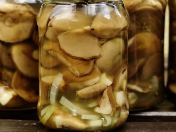 как правильно мариновать грибы маслята