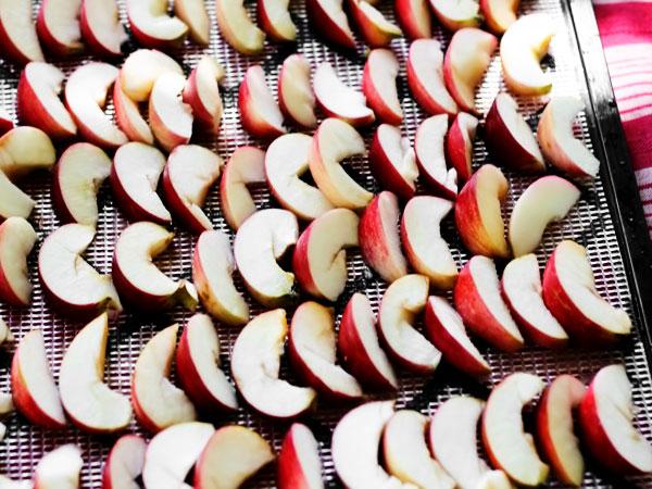 как сушить яблоки в духовке на зиму