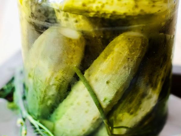 Хрустящие квашеные огурцы на зиму как бочковые пошаговый рецепт