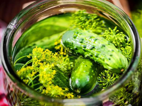 Вкусные малосольные огурчики: рецепт с фото