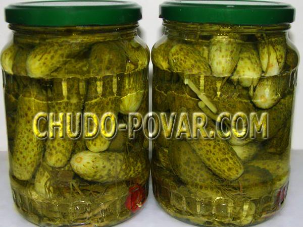 маринованные огурцы рецепт на 1 литровую банку с фото
