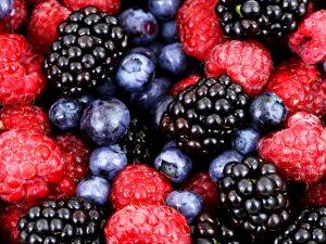 Сбор ягод: ягодный календарь лесных ягод и садовых