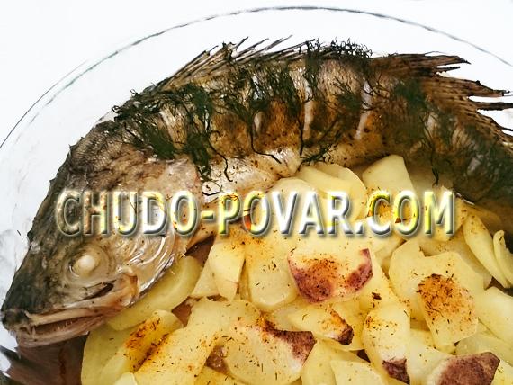 судак запеченный в духовке рецепт с фото