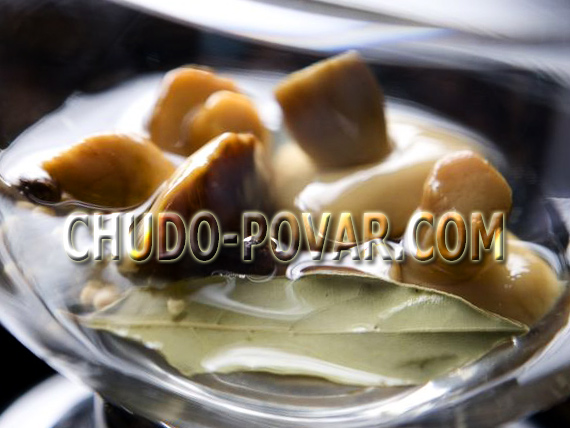 засолка грибов рецепт с фото