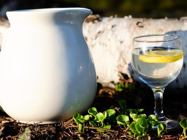 фото консервированный сок березы рецепт на зиму