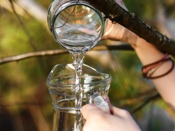 как хранить берёзовый сок в домашних условиях