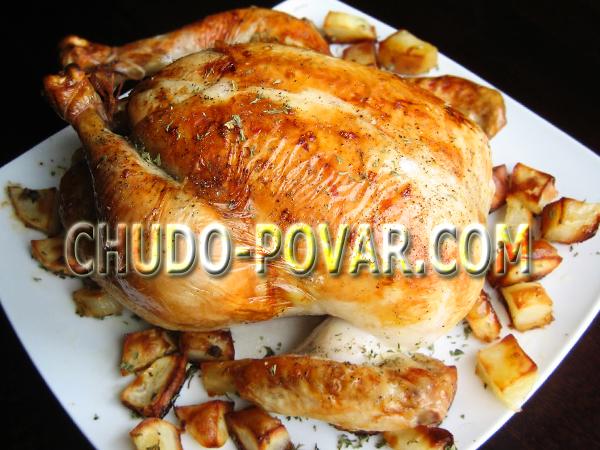 целая курица в духовке с картошкой и грибами рецепт с фото в духовке