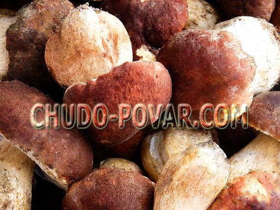 маринованные белые грибы рецепт с фото