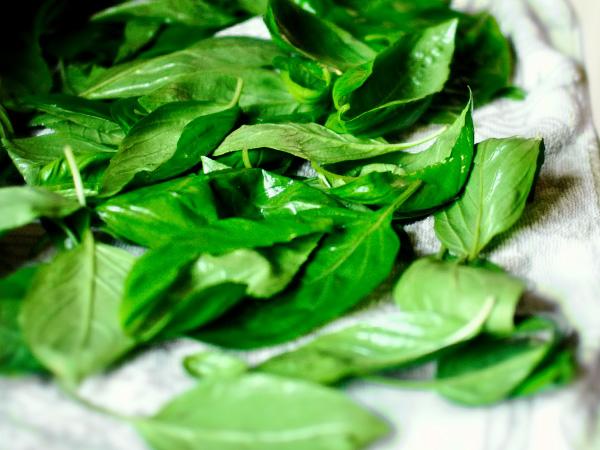 салат из капусты и помидоров рецепт с фото очень вкусный с