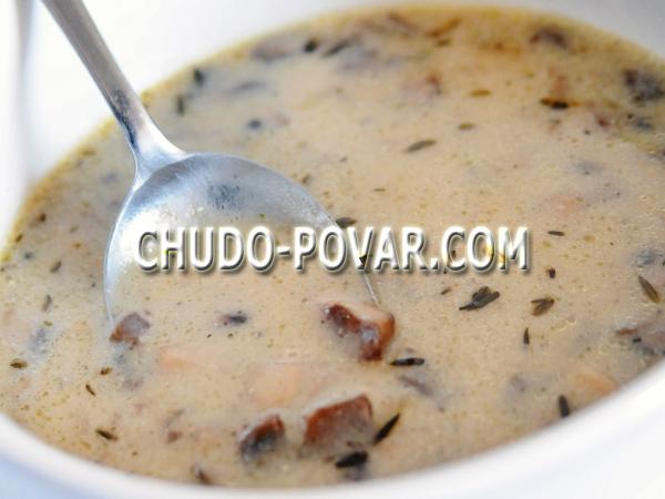 как приготовить суп из белых грибов свежих