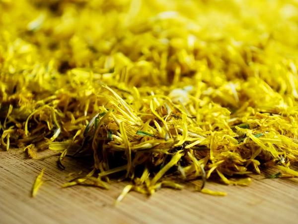 ярко-жёлтые соцветия