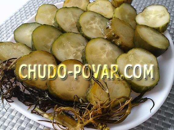 Закатка огурцов рецепт на зиму с фото